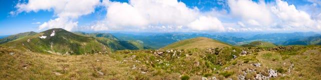 Panorama de montagne d'été (Ukraine, carpathiennes) photographie stock