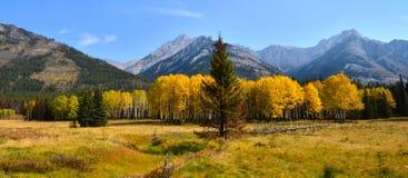 Panorama de montagne d'automne Images stock