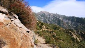 Panorama de montagne de Smith Images libres de droits