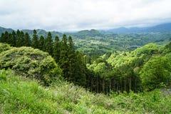 Panorama de montagne de verdure, pont et vue de ville de loin Image libre de droits