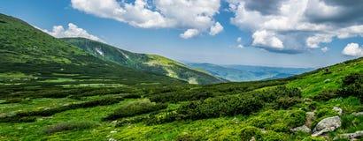 Panorama de montagnes carpathiennes en Ukraine images libres de droits