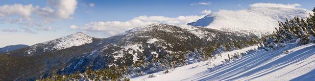 Panorama de montagnes de l'hiver. La Bulgarie, Borovets Photo libre de droits
