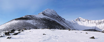 Panorama de montanhas orientais de Sayan. Altai. Imagem de Stock