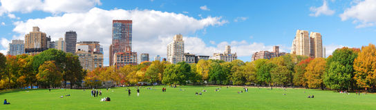 Panorama de New York City Central Park Image libre de droits