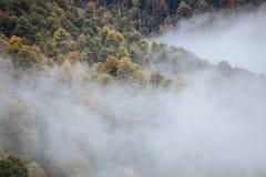 Panorama de niebla Fotos de archivo libres de regalías