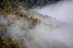Panorama de niebla Foto de archivo
