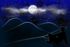 Panorama de nuit illustration libre de droits