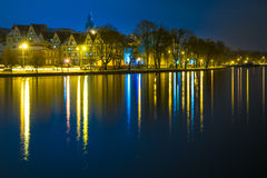 Panorama 3 de nuit d'élans Image libre de droits