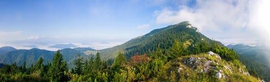 Panorama de paisagem surpreendente da montanha do verão - Eslováquia fotografia de stock royalty free