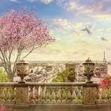 Panorama de Paris Image stock