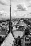 Panorama de Paris da torre Notre Dame de Paris da catedral ( Imagens de Stock Royalty Free