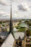 Panorama de Paris de la tour Notre Dame de Paris de cathédrale Image stock