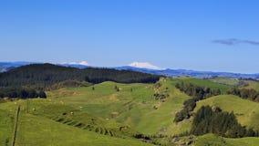 Panorama de paysage de collines vertes et de volcans Photographie stock libre de droits