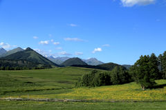 Panorama de paysage de montagne Photo stock