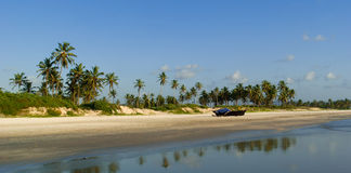 Panorama de plage sauvage dans Goa du sud Photos libres de droits