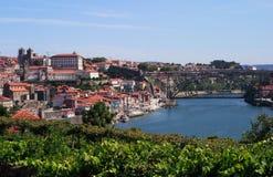 Panorama de Porto Imagem de Stock