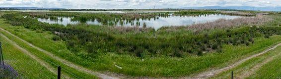 Panorama de réserve naturelle - Espagne Image stock
