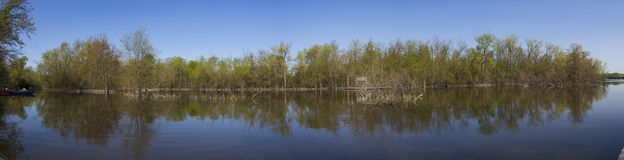 Panorama de ressort Photo libre de droits
