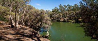 Panorama de rivière de cygne en Maali Bridge Park, vin REGIO de vallée de cygne Image stock