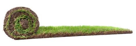 Panorama de roulement de pelouse photos stock