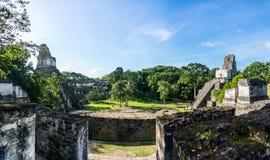 Panorama de ruinas mayas en Tikal, parque nacional Guate que viaja Imagen de archivo