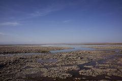 Panorama de Salar de Atacama Scenery Images libres de droits
