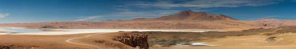 Panorama de Salar de Tara Photos libres de droits