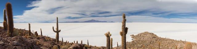Panorama de Salar de Uyuni Image libre de droits