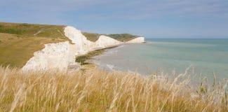 Panorama de siete acantilados de las hermanas y del mar en Brighton, Sussex Foto de archivo libre de regalías