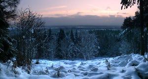Panorama de snowscape froid et givré Photo stock