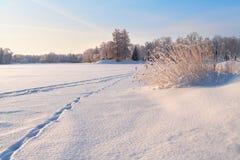 Panorama de stationnement de l'hiver Photos libres de droits