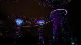 Panorama de Supertree Singapur almacen de video