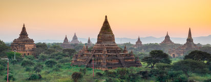 Panorama de temple de Bagan au coucher du soleil, Myanmar Photographie stock libre de droits