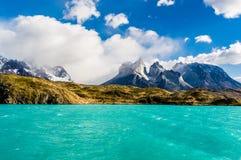 Panorama de Torres del Paine Imagens de Stock Royalty Free