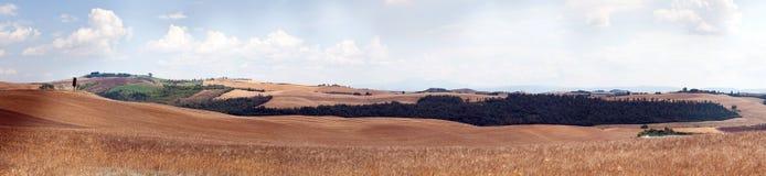 Panorama de Toscânia imagem de stock royalty free