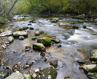 Panorama de um rio selvagem Imagens de Stock Royalty Free