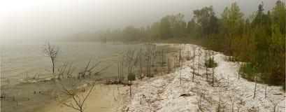 Panorama de un día de niebla en la línea de la playa del lago Michigan Imágenes de archivo libres de regalías