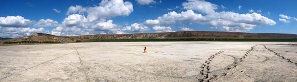 Panorama de un lago de sal con una muchacha descubierta Foto de archivo libre de regalías
