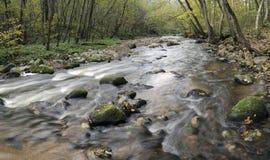 Panorama de un río salvaje imagenes de archivo