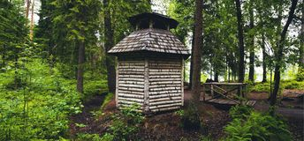 Panorama de una casa del abedul en el bosque Foto de archivo libre de regalías