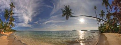 panorama de valeurs maximales de concentration au poste de travail de KOH de plage photo stock