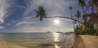 panorama de valeurs maximales de concentration au poste de travail de KOH de plage image stock