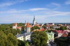 Panorama de vieux Tallinn Images libres de droits