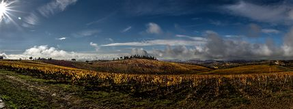 Panorama de vignobles de la Toscane photos stock