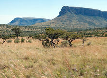 Panorama de Waterberg. Fotos de archivo