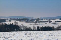 Panorama in de winter stock foto's
