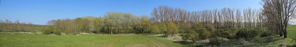 Panorama de Wuestung Spiegelsdorf dans Mecklenburg-Vorpommern Le village a été abandonné il y a bien longtemps pendant les années Photographie stock libre de droits