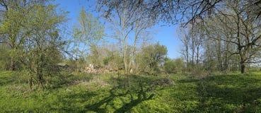 Panorama de Wuestung Spiegelsdorf dans Mecklenburg-Vorpommern Le village a été abandonné il y a bien longtemps pendant les années Images stock