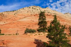 Panorama de Zion National Park Imagem de Stock