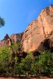 Panorama de Zion National Park Fotografia de Stock